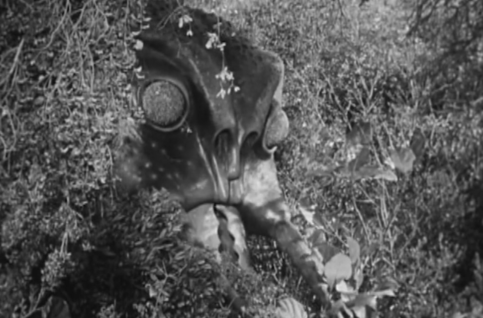 A scene from the movie Monster from Green Hell
