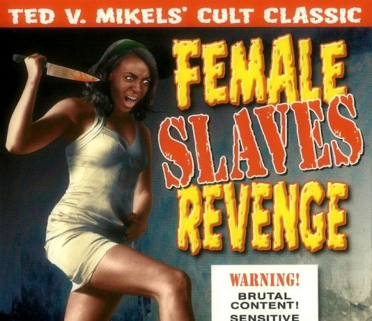 Female Slaves Revenge movie poster