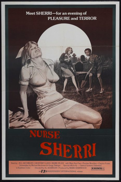 Nurse Sherri Black Voodoo horror movie poster