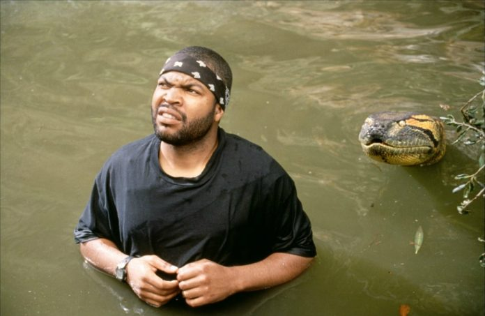 Ice Cube in Anaconda
