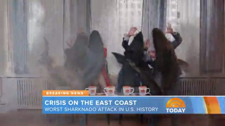 Al Roker, Sharknado 3: Oh Hell No! (2015)