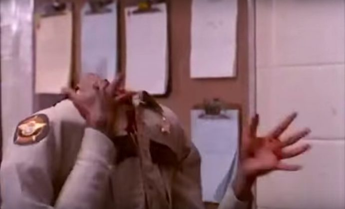 Jerry White, Basket Case 3 (1991)
