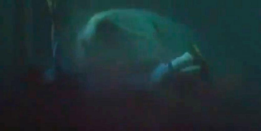 Alonzo Ward, Jaws 3-D (1983)