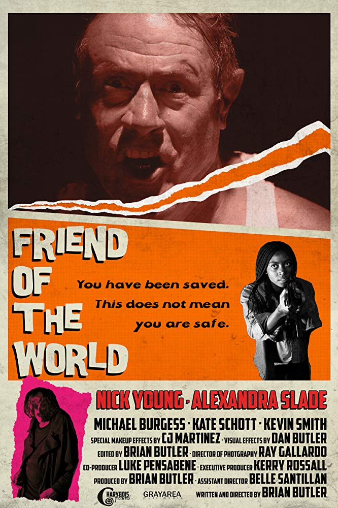 Friend of the World movie poster